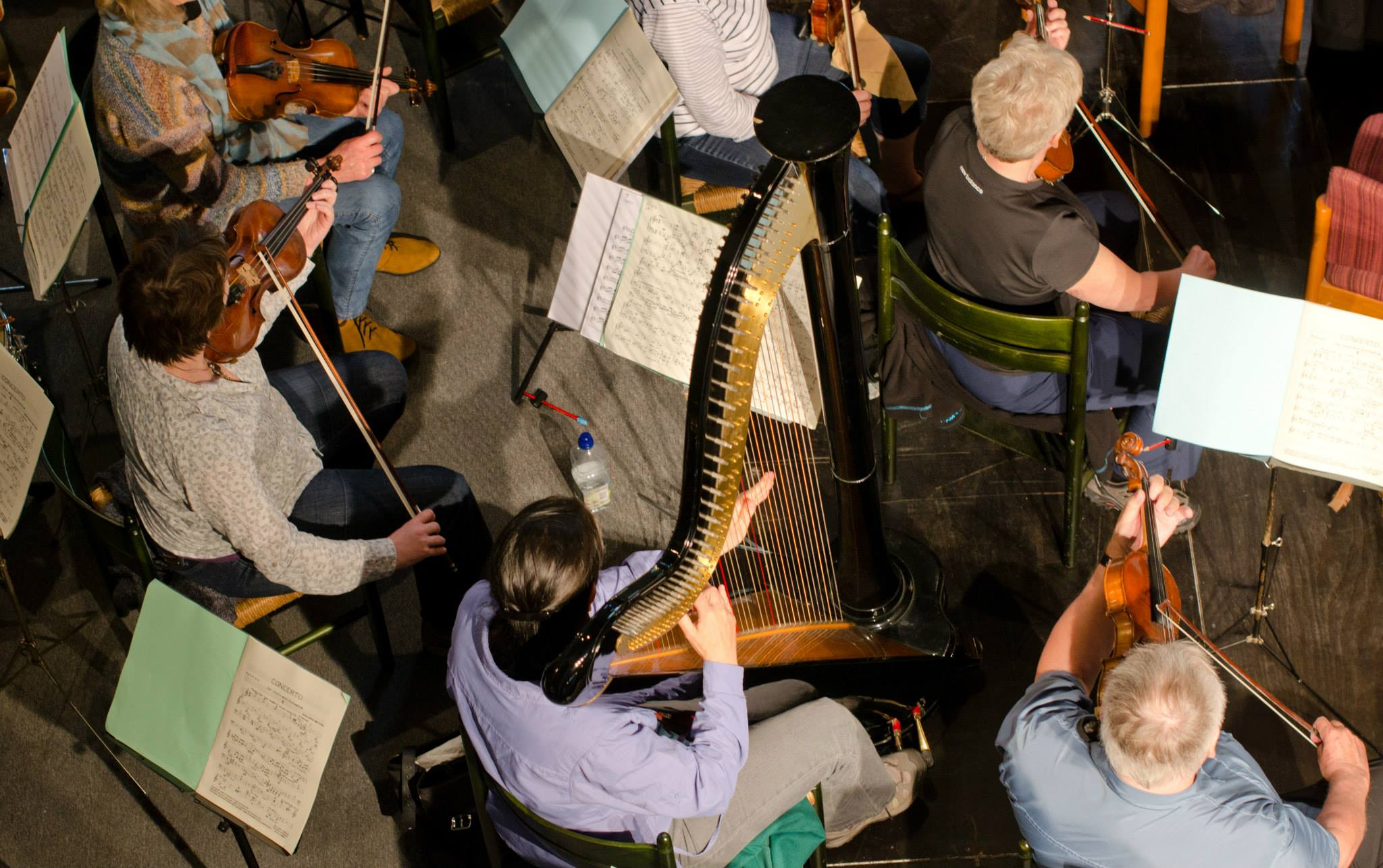 Harp from above