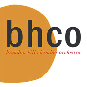 Fine Chamber Orchestra based in Bristol